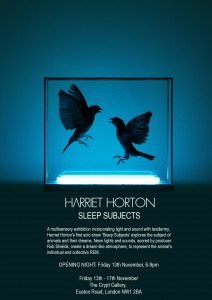 Sleep Subjects - Harriet Horton